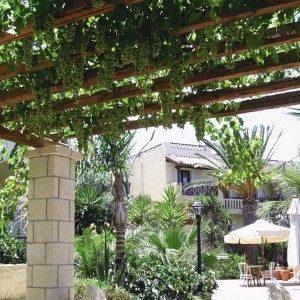 Виноград Біанка, опис сорту, фото