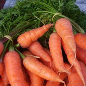 Зберігаємо моркву свіжою і міцною в погребі на всю зиму.