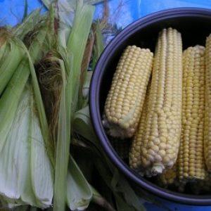 Як правильно варити кукурудзу в мультиварці, скороварці і пароварці?