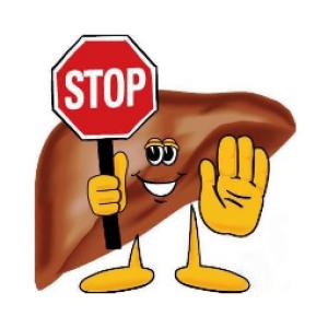 Ожиріння печінки у курей або печінковий липидоз