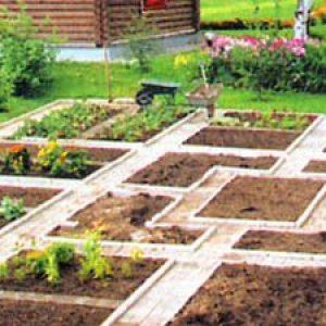 Планування городу і саду – наводимо порядок на ділянці + Відео