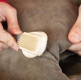 Як почистити замшу від жирних плям  домашні хитрощі  51bc6e98517ee
