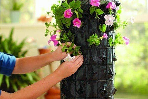 Во что можно посадить цветы дома