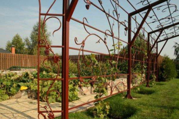 Для винограда опора своими руками из арматуры 43
