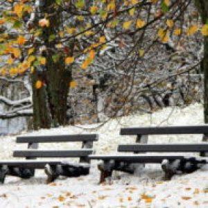 Соннник Сніг Восени білий і чистий бачити уві сні до чого сниться?