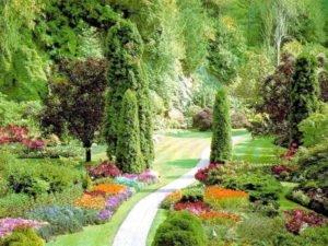 Фото молодого квітучого саду фото 744-458