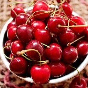 Опис популярних сортів червоної черешні: Карамель, Прощальна, Тютчевка