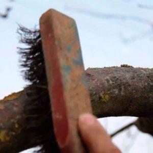Весняне обприскування саду від шкідників і хвороб, ніж обприскувати дерева