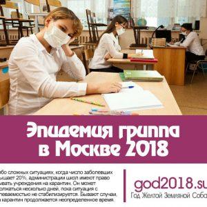 Епідемія грипу в Москві 2018. Останні новини, карантин у школах