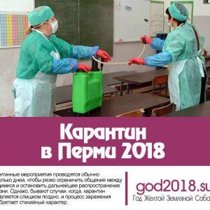 Карантин у Пермі 2018. Епідемія грипу, останні новини