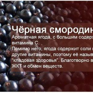 Настоянки з чорної смородини: на самогоні, горілки і спирту в домашніх умовах