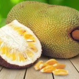 Що це таке фрукт джекфрут, смак, калорійність, корисні властивості