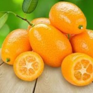 Що це за фрукт кумкват, користь і шкоду, калорійність