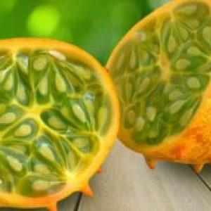 Що таке ківано фрукт, опис , корисні властивості рогатої дині