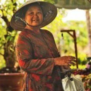 Фрукти В'єтнаму по місяцях – фото, назву, опис