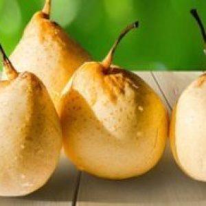 Китайська груша (нэши, кришталева) калорійність, користь і шкода
