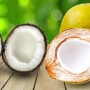 Кокос – корисні властивості і шкоду, склад і калорійність