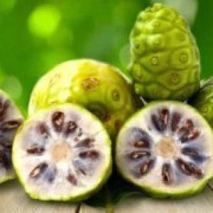 Ноні Тайський фрукт, смак, корисні властивості, сік ноні