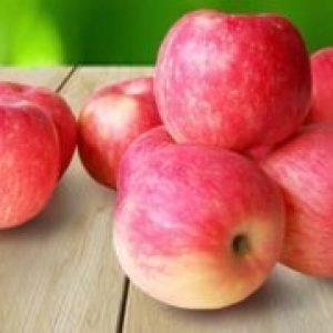 Яблука Фуджі опис і характеристики сорту, користь і шкода